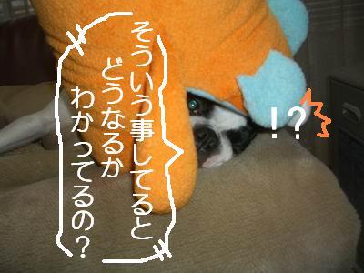 a0086698_20113819.jpg