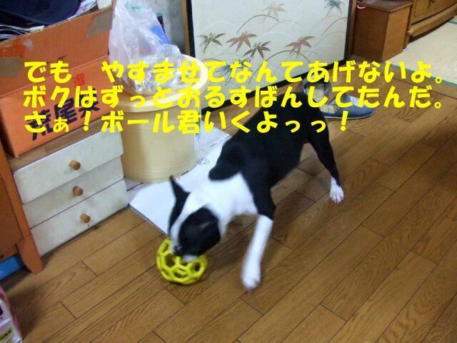 f0059334_92777.jpg