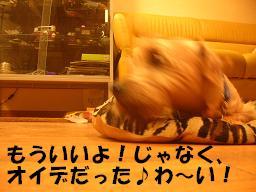 c0004744_0142538.jpg