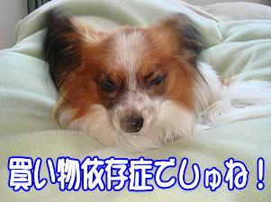 f0011845_27238.jpg
