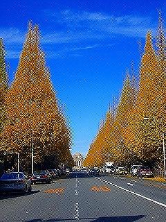 12/15 横浜アリーナ_c0098756_3134823.jpg