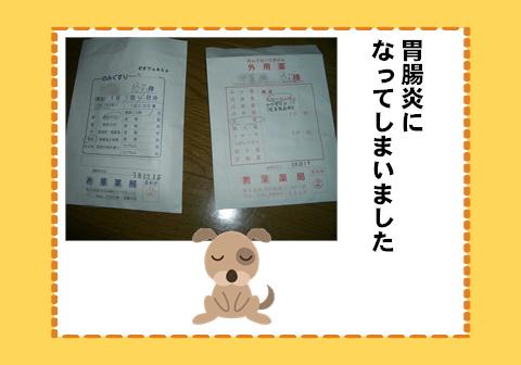 f0054868_1345676.jpg