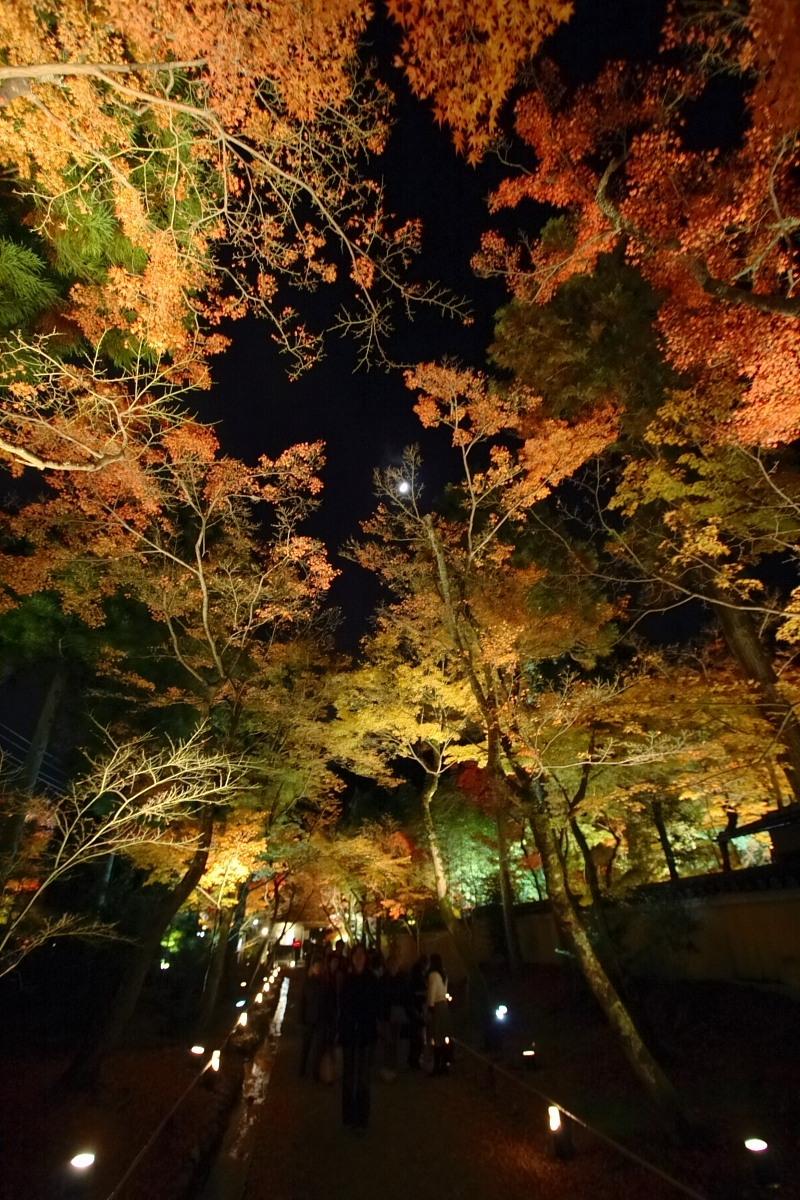 京都 嵯峨野 <嵐山> 紅葉 5_f0021869_22101586.jpg