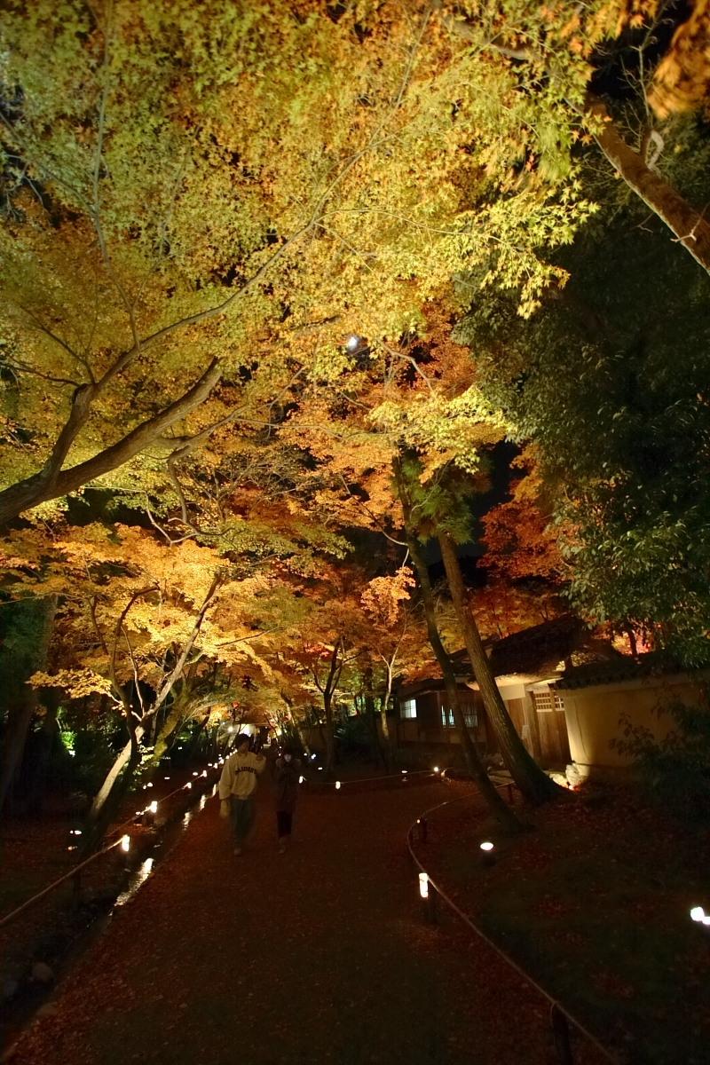京都 嵯峨野 <嵐山> 紅葉 5_f0021869_22114679.jpg