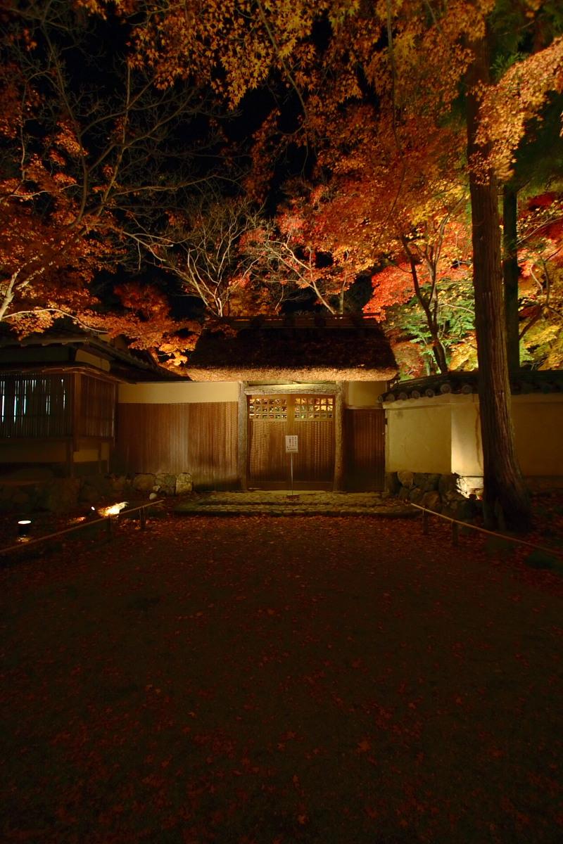 京都 嵯峨野 <嵐山> 紅葉 5_f0021869_22124472.jpg