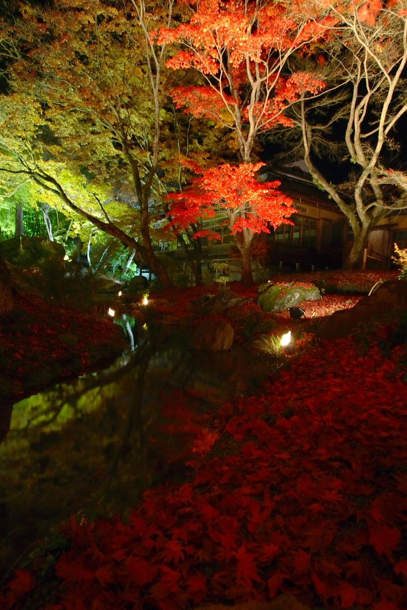 京都 嵯峨野 <嵐山> 紅葉 5_f0021869_22181899.jpg