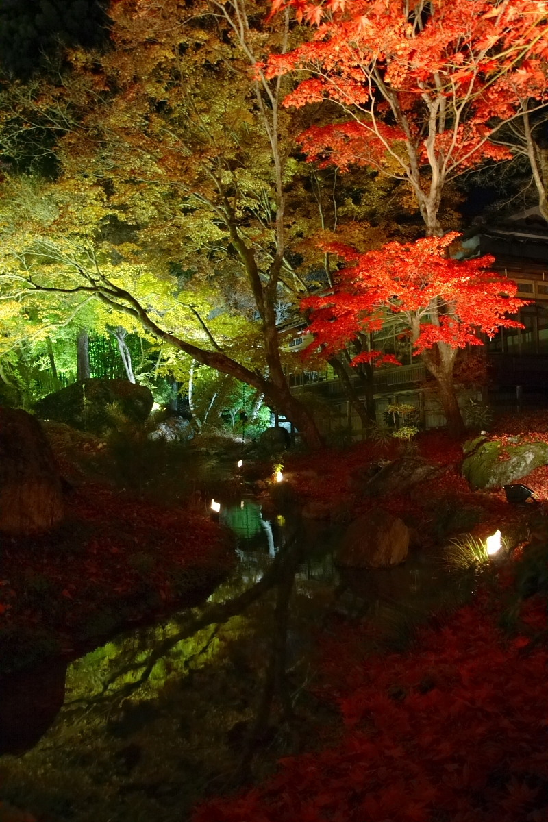 京都 嵯峨野 <嵐山> 紅葉 5_f0021869_22242215.jpg