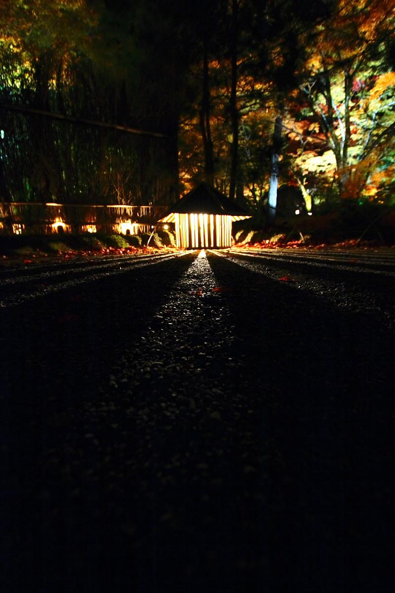 京都 嵯峨野 <嵐山> 紅葉 5_f0021869_2225537.jpg