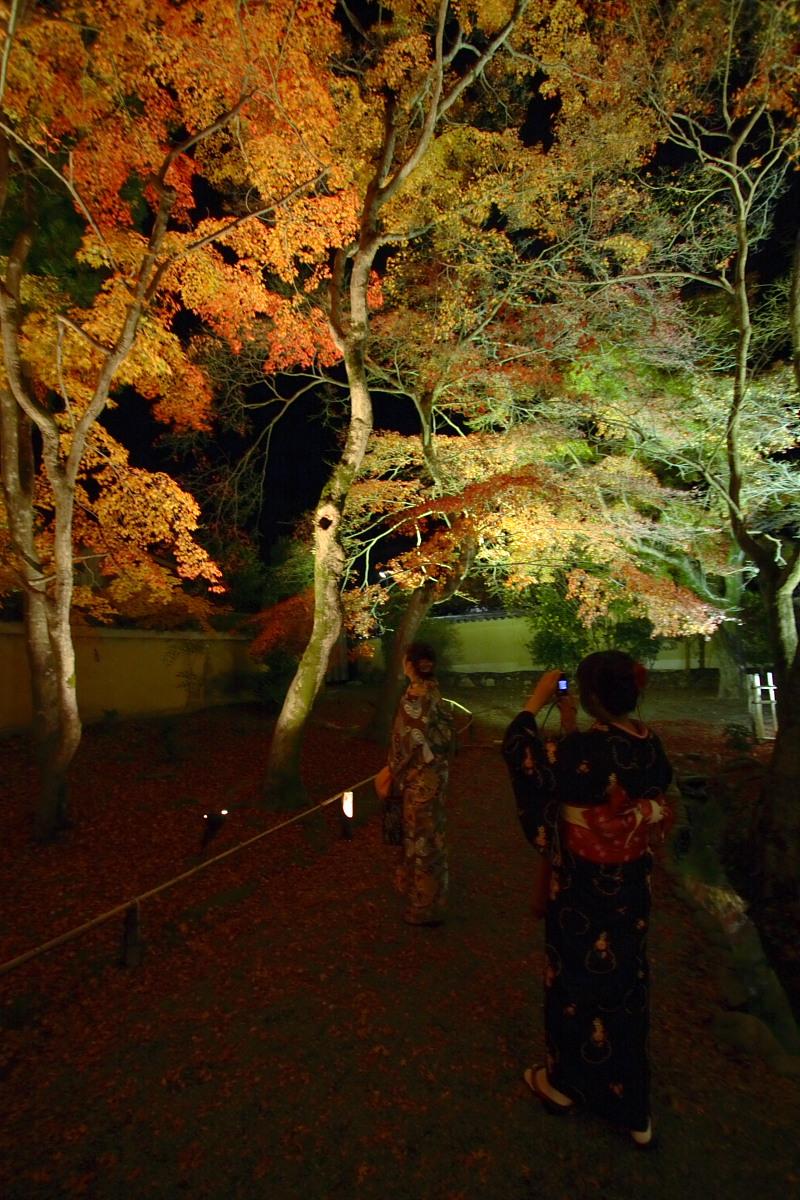 京都 嵯峨野 <嵐山> 紅葉 5_f0021869_2252943.jpg