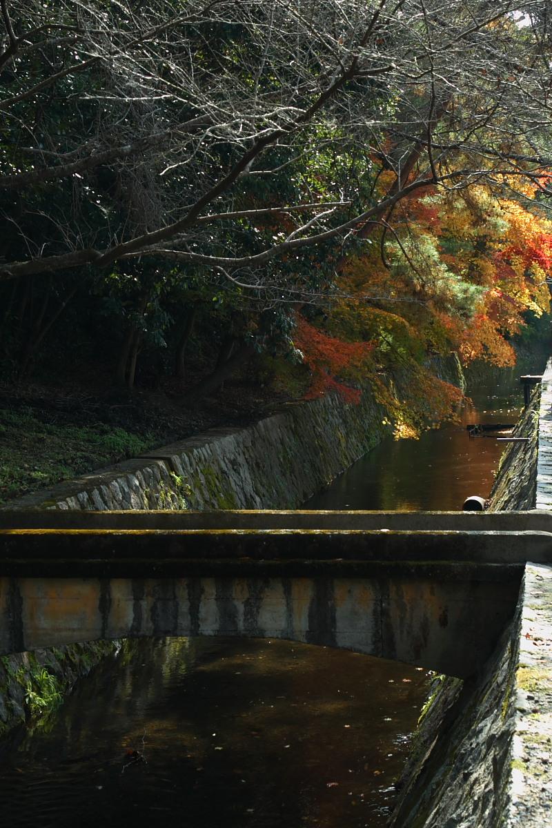 京都 東山 <南禅寺> 紅葉 _f0021869_2254144.jpg