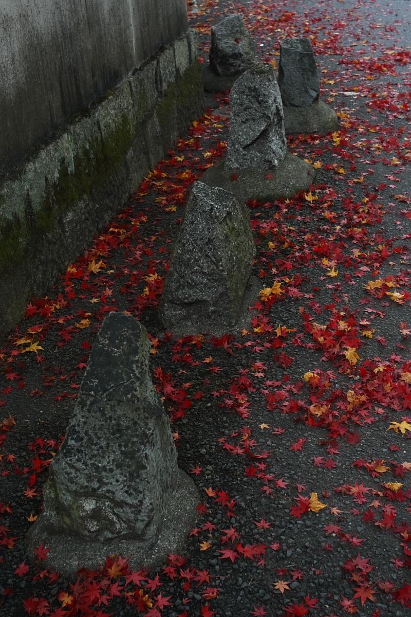 京都 東山 <南禅寺> 紅葉 _f0021869_225887.jpg