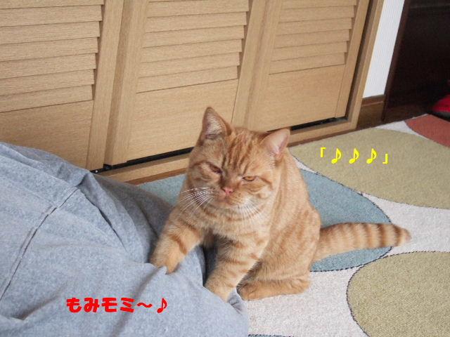 f0032020_20121541.jpg