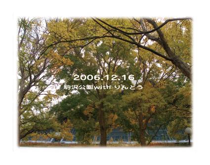 f0118627_23401676.jpg
