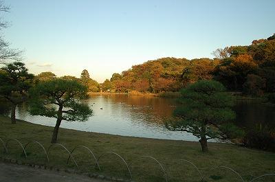 横浜 三渓園_e0076932_23532741.jpg
