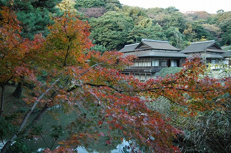 横浜 三渓園_e0076932_23573349.jpg