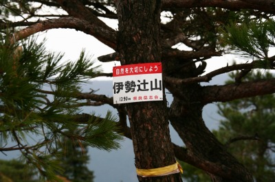 伊勢辻山(1290m) 雲ガ瀬山 ハンシ山 三重と奈良県の県境_d0055236_14124070.jpg