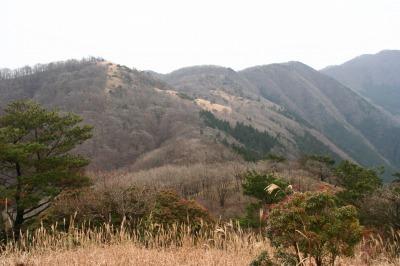 伊勢辻山(1290m) 雲ガ瀬山 ハンシ山 三重と奈良県の県境_d0055236_1420826.jpg