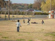 公園へお出掛け_d0103450_19155067.jpg
