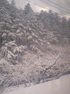 冬到来_e0012815_1124014.jpg