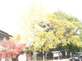 岡山漫遊記_c0025217_1222661.jpg