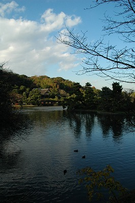 横浜 三渓園_e0076932_0154451.jpg