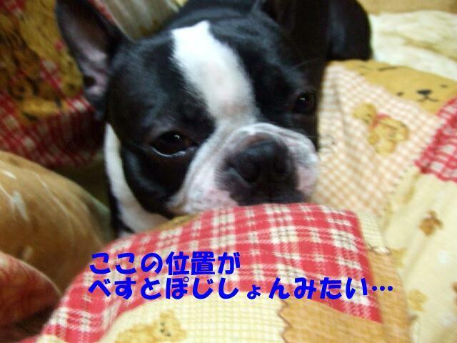 f0059334_10245748.jpg