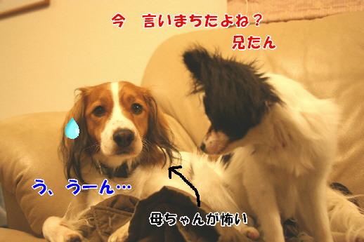 d0013149_2231012.jpg