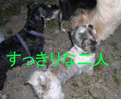f0053952_12472173.jpg