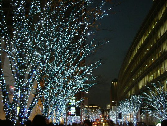 オークリーフ(クリスマスイルミネーション)_f0049672_16221327.jpg