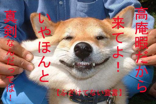 a0019032_54377.jpg