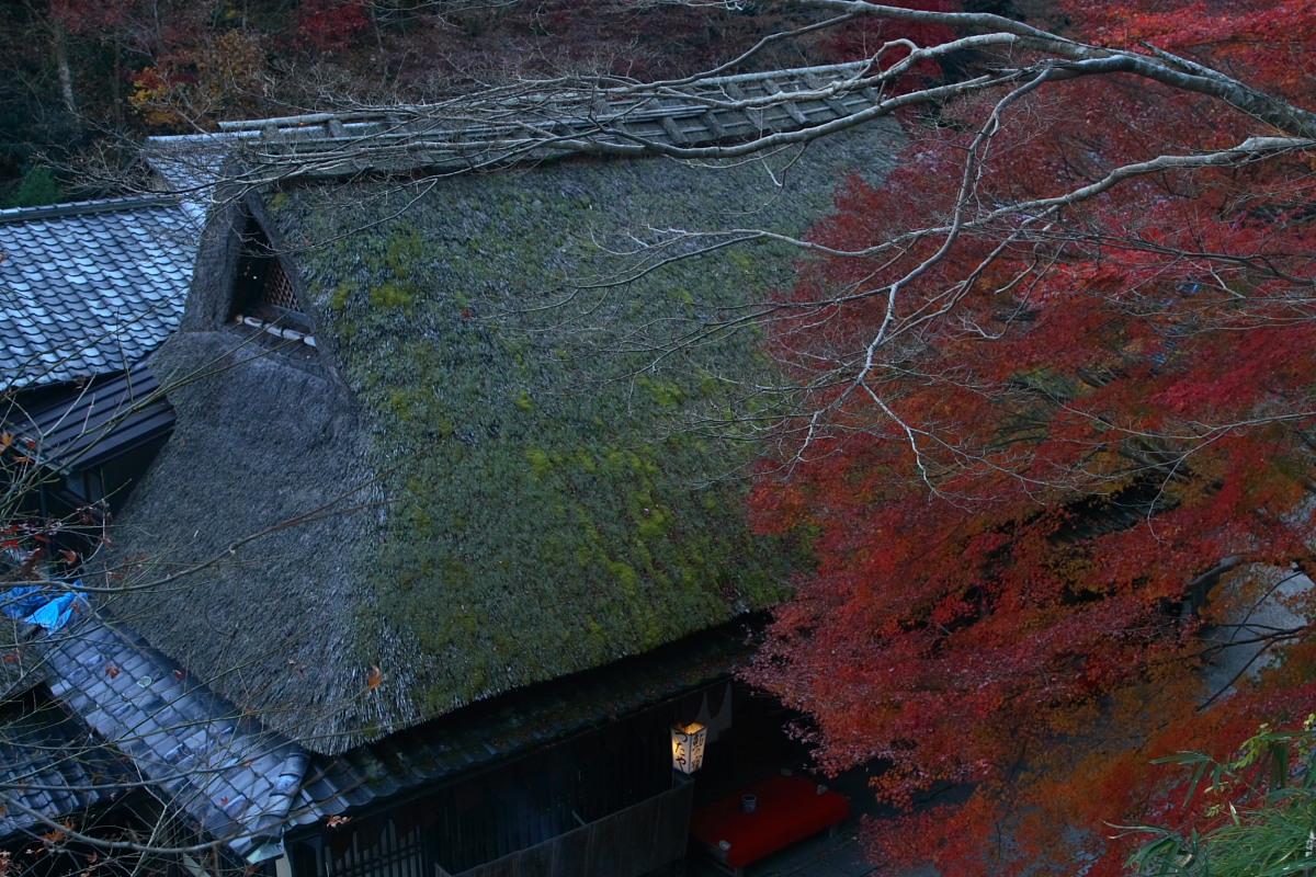 京都 嵯峨野 <鳥居本> 紅葉 7_f0021869_21195552.jpg