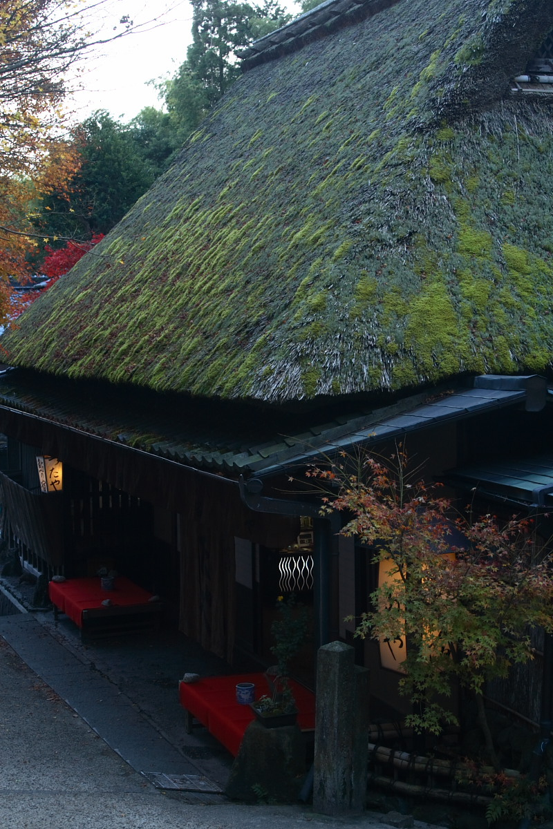 京都 嵯峨野 <鳥居本> 紅葉 7_f0021869_21205810.jpg