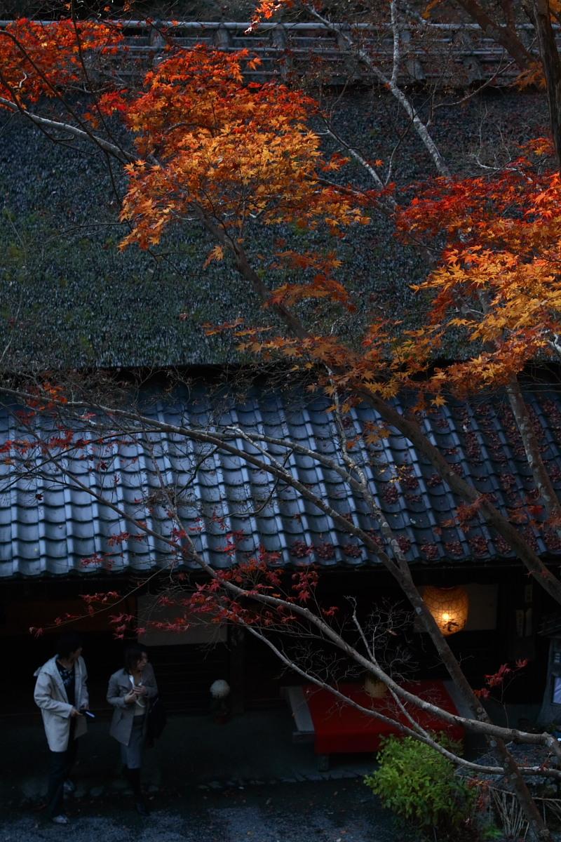 京都 嵯峨野 <鳥居本> 紅葉 7_f0021869_21215263.jpg