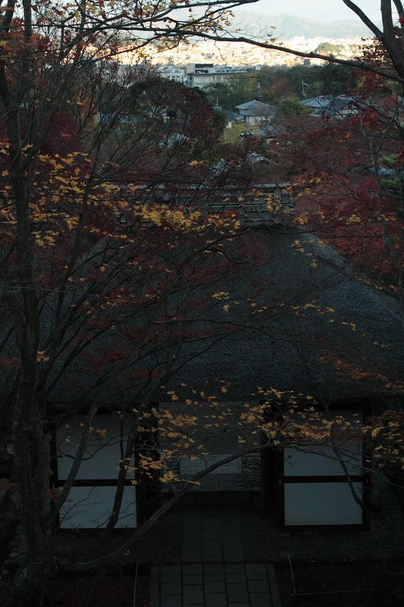 京都 嵯峨野 <常寂光寺> 紅葉 8_f0021869_2142126.jpg
