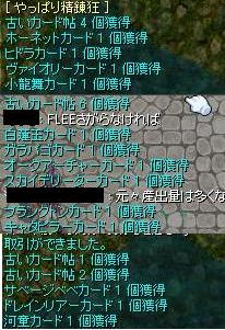 e0065378_20111452.jpg