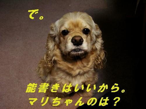 b0067012_145263.jpg