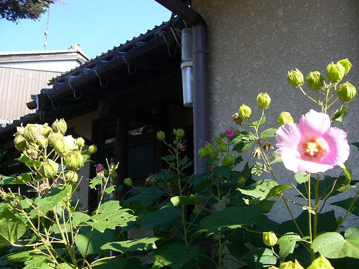 近江八幡教会牧師館_c0094541_15102734.jpg