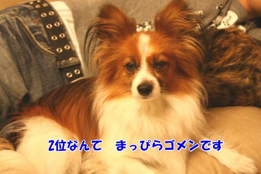 d0013149_0381094.jpg