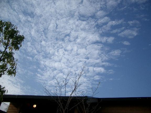 「空と雲・・・」_b0087994_2124268.jpg