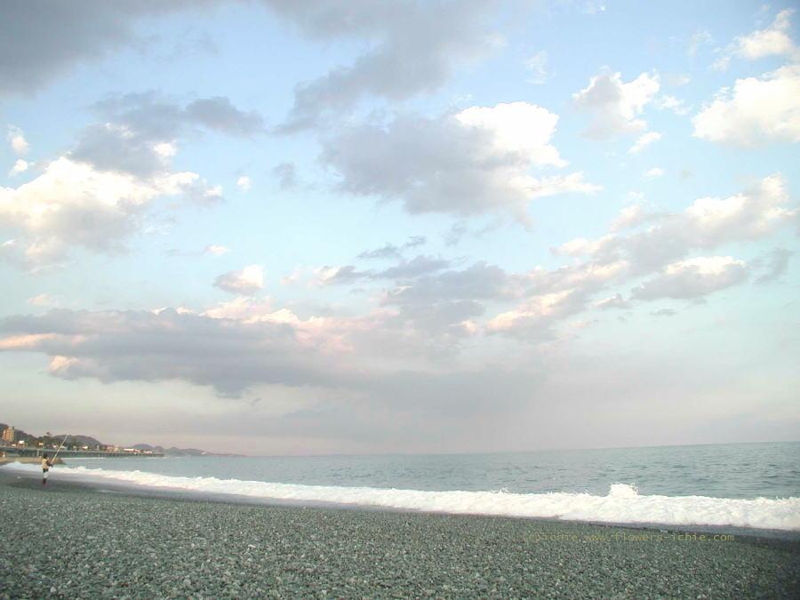 空と海の景色  国府津_a0042928_020869.jpg