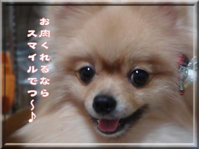 b0078073_15505750.jpg