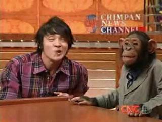 チャンネル チンパン ニュース