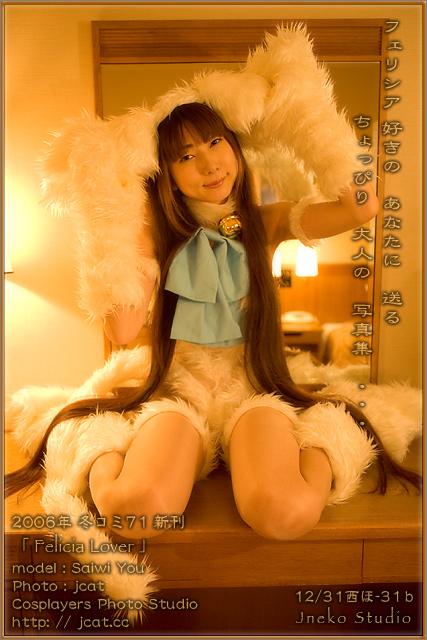 冬コミ71新作 「 Felicia Lover 」_b0073141_2327311.jpg