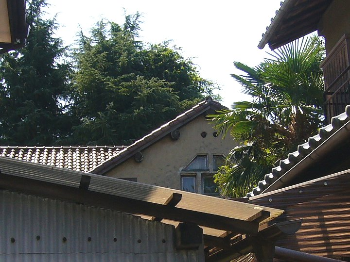 近江八幡の前田邸_c0094541_14205832.jpg
