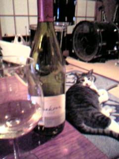 猫とワイン_b0064080_22132216.jpg