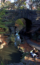 マンハッタンで秘境を探検!~ セントラルパークにある滝 Ravine_b0007805_22454696.jpg