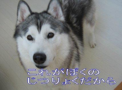 f0112407_015918.jpg