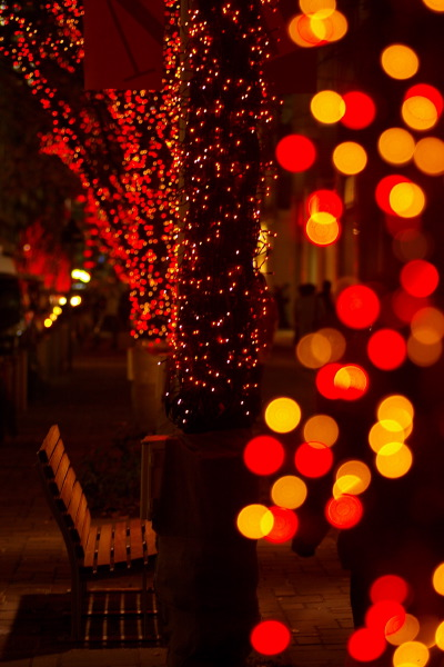 Christmas・2006_b0053019_2148979.jpg