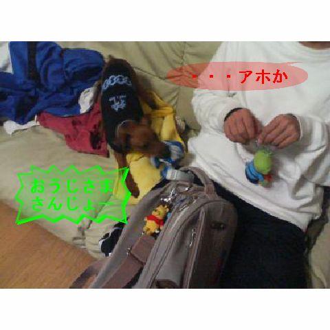 f0123589_11292590.jpg