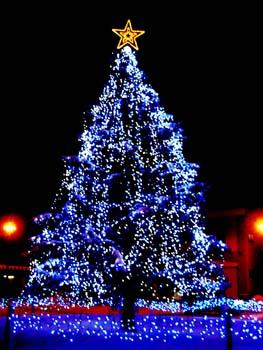 メリ~・クリスマ~ス!_f0096216_19353050.jpg